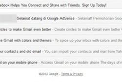 Daftar Google AdSense Mantan Banned Langsung Full Approve