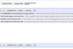 (Pengalaman) Disetujui/Diapprove Google Adsense Hanya Dalam Waktu 1 Jam